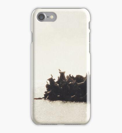 Morning Breeze iPhone Case/Skin