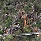 Cataract Gorge by margotk