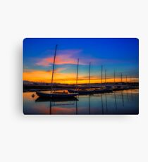 Redwing Sunset Canvas Print