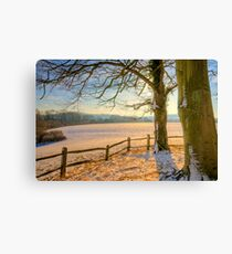 Peter's Field Canvas Print