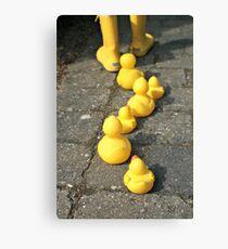 Follow the yellow Canvas Print