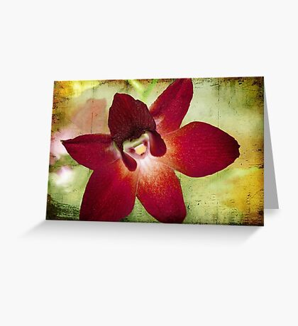 Orchid 2 Greeting Card