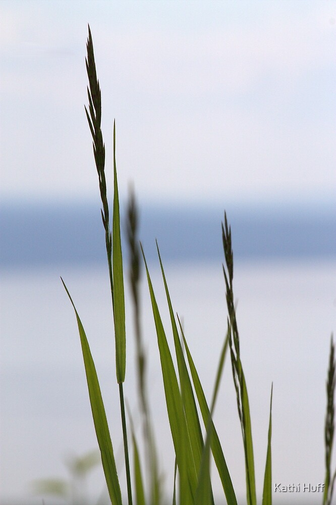 Blades of Grass by Kathi Huff