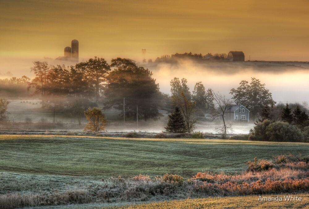 Sunrise on a Misty Morn by Amanda White