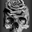 Skull Rose by Jessica Bone