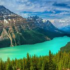 Peyto Lake WideScape by James Anderson