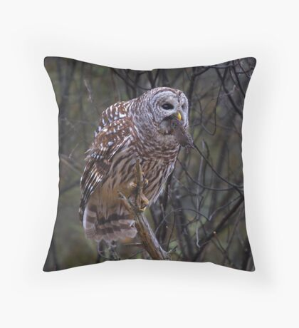 Barred Owl with vole Throw Pillow