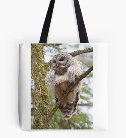 Cool Owl - Barred Owl Tote Bag