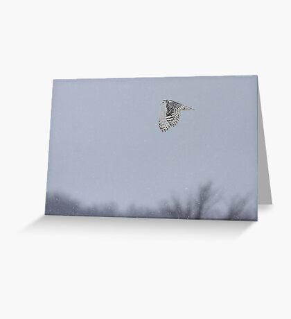 Snowy owl...high above the treetops Greeting Card