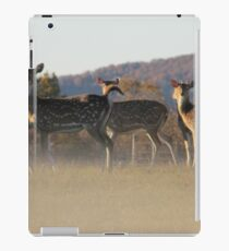 Axis Deer iPad Case/Skin