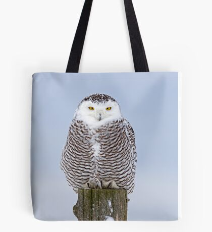 Snowy Owl on post Tote Bag