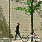 Wall, Young Man Walking, Tree, Bike, Shadows ... by Scott Johnson