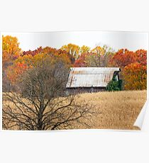 Autumn Barn and Tree in Cornfiled Poster