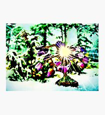 Amethystine Tree of Happiness Photographic Print