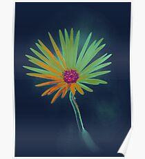 Blue Daisy Flower Poster