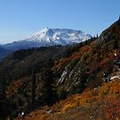 Mt St Helens 9440_101913 by Randy Craig (nature & landscape photography)