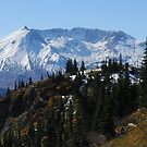 Mt St Helens 9455_101913 by Randy Craig (nature & landscape photography)
