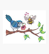 The Birds and The Bees!  Photographic Print