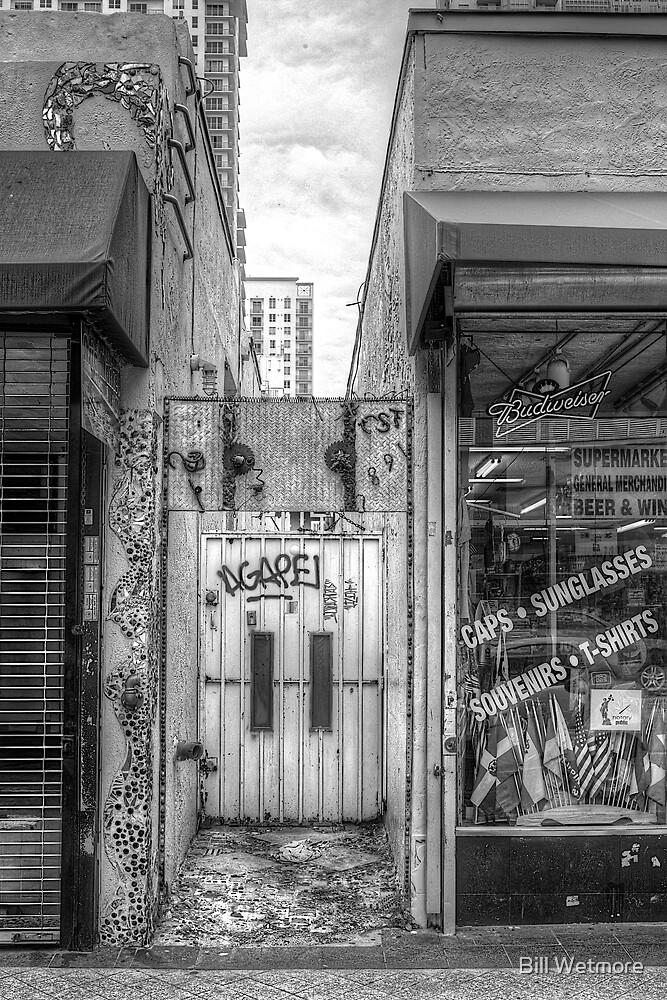 Eclectic Alley Door by Bill Wetmore