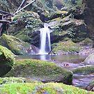 Waterfall in Bhutan by Istvan Hernadi