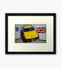 Penny  On the Wall Framed Print