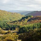 Elan valley mountain trail by Steve Shand