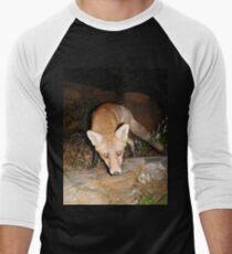 Foxxy Men's Baseball ¾ T-Shirt