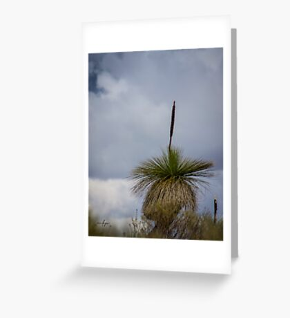 Grass Tree Greeting Card