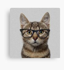 Hipster Cat Canvas Print