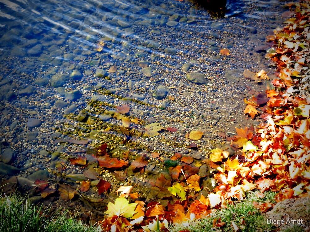 Autumn Water's by Diane Arndt