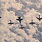 Warbirds Downunder, 2013 by bazcelt