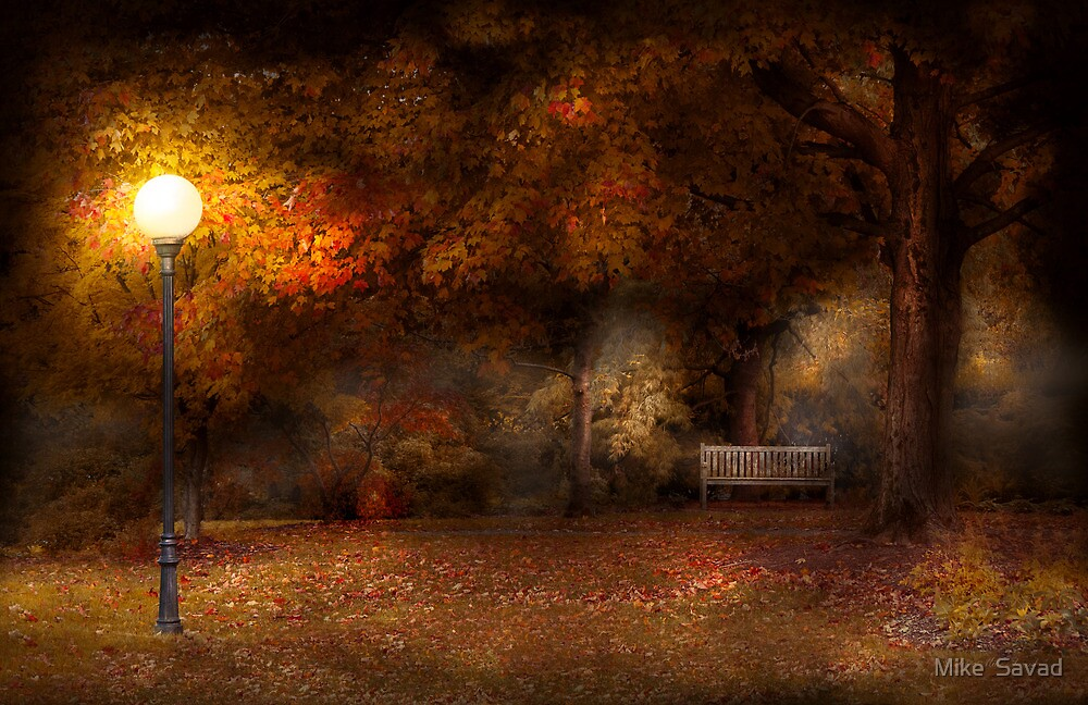 Autumn - A park bench  by Michael Savad