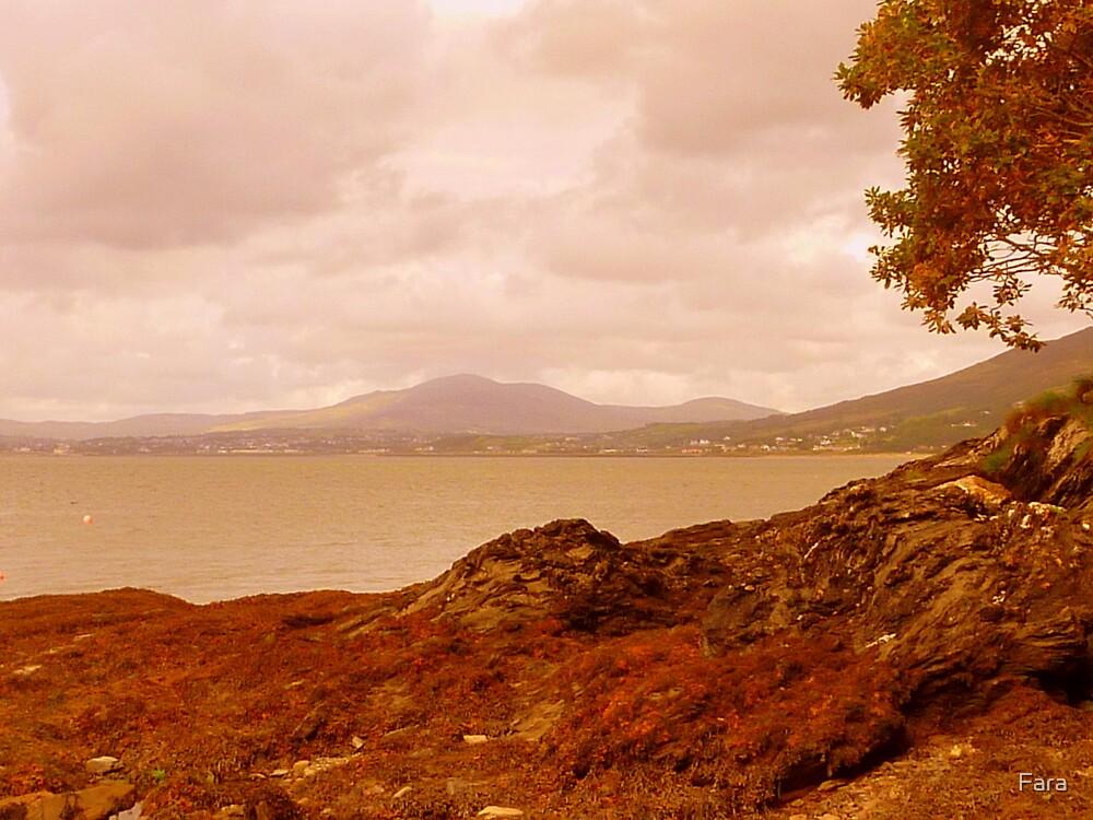 Fading Light On An Irish Island by Fara