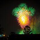 Firework 2 by Sherene Clow