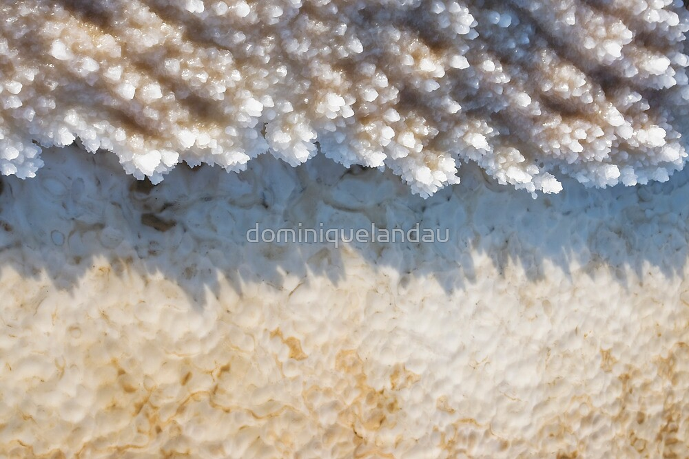 Natural abstract #4 by dominiquelandau