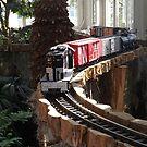 Model Trains, New York Botanical Garden Holiday Train Show, Bronx, New York, 2015 by lenspiro