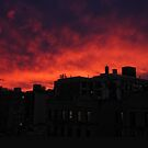 Red Sky at Dawn by steeber