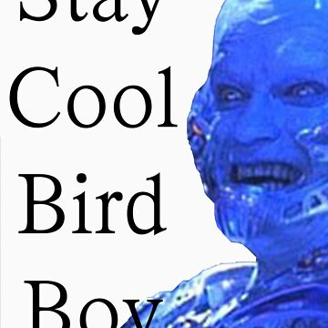 Stay Cool Bird Boy by Moneyman22