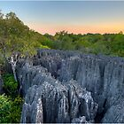 The Tsingy of Madagascar by Fidisoa Rasambainarivo