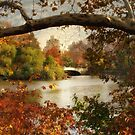 Autumn in Central Park by Jessica Jenney