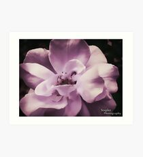 Smooth AF Flower Art Print