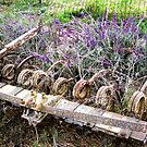 The Beauty of Organic Farm Equipment 4 by waddleudo