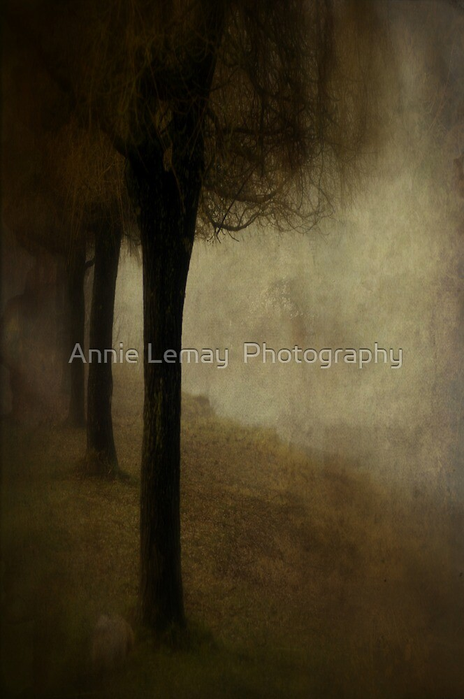 Time by Annie Lemay  Photography