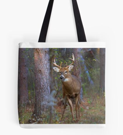 Who goes there? - White-tailed Buck Tote Bag