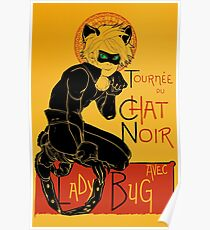 Black Cat and the Ladybug Poster