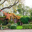 Autumn Corner by Alan Robert Cooke