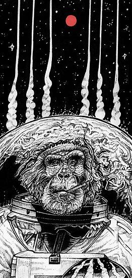 Space Monkey by Squishysquid