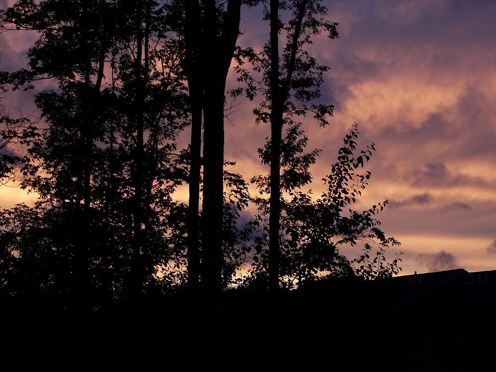 Early September Dusk by ValSteve59