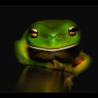 Super frog 01 by kevin chippindall