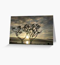 Corel Trees Greeting Card